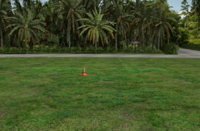 3D training field environment